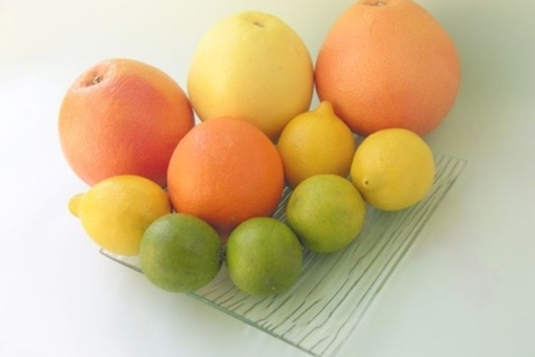 750x500-ehow-images-a06-fl-gi-do-limes_-oranges-grapefruit-juice_-800x800