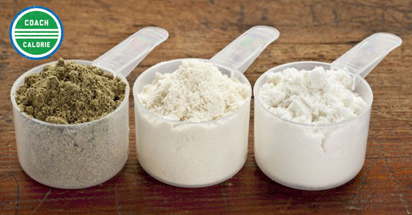 what-is-the-best-protein-for-weight-loss