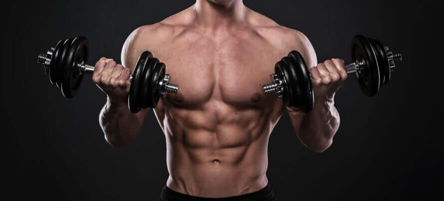 esencijalne aminokiseline mišićna masa